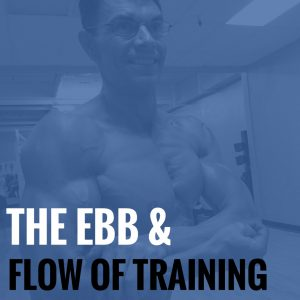 The Ebb and Flow of Training