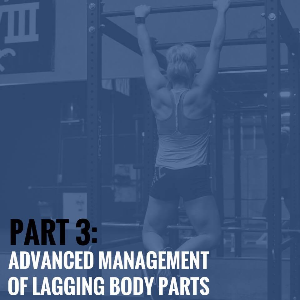 Part 3 Advanced Management Of Lagging Body Parts 3d Muscle Journey