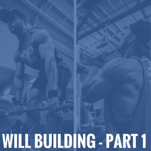 Will Building – Part 1
