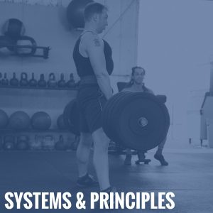 Systems & Principles